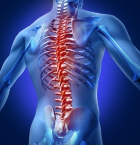 Jak sobie radzić z bólem pleców